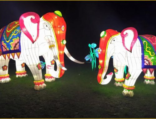 Chinese New Year at Chiswick House